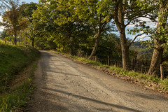 Country Lane in West Virginia (Ken Krach Photography) Tags: westvirginia