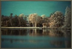 2019 11 23 Wörlitz Park IR 680nm - 65 b (Mister-Mastro) Tags: wörlitz park reflexion reflektion reflection spiegelung wasser see water eau lake pond ir infrared 680 nm