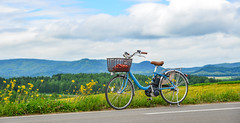 Bicycle on the rural road (phuong.sg@gmail.com) Tags: abstract activity adventure agriculture alone asia asian background basket beautiful bicycle biei bike biking countryside cycle device family farm farmland field grass green gripper hand healthy japan landscape light nature outdoor paddy play rice ride road sky sport spring stand summer sun sunset taiwan thailand travel vietnam view vintage wheel white yard