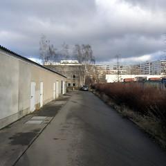 bebirkter Parkplatz / Große-Leege-Straße / Alt-Hohenschönhausen / beim Bezirksamt (galibier2645) Tags: berlin guesswhereberlin birke laubbaum plattenbau baum auto wolken