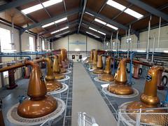 Photo of Glenfiddich Distillery in Dufftown