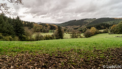 [BDR] Les deux rochers - 03 (Lцdо\/іс) Tags: ballade novembre november 2019 ostbelgien eastbelgium east belgique belgium belgie belgian beautiful automne autumn automnale rocher falize province liège liege malmedy malmédy wild sauvage nature europe europa grey sky gris ciel bellevaux canton est rêve lцdоіс treking tree trekking river warche long explore extérieur exposure outdoor outside travel trip