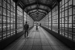 Passage (henny vogelaar) Tags: berlin bw streetphotography hennyvogelaarfotografie people perspective lines windows symmetry station germany passage pedestrians glass metal wood berlinfriedrichstrasse railway sbahn architecture