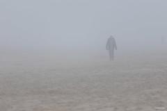 Misty Beach / Koksijde (Philippe Clabots (#PhilippeCPhoto)) Tags: philippecphoto belgie belgique belgium coxyde flandres koksijde philippec tethered vlaanderen westvlaanderen westhoek