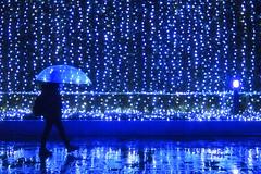 LET THE RAIN SHINE IN 84 (ajpscs) Tags: ©ajpscs ajpscs 2019 japan nippon 日本 japanese 東京 tokyo city people ニコン nikon d750 tokyostreetphotography streetphotography street shitamachi night nightshot tokyonight nightphotography citylights tokyoinsomnia nightview strangers urbannight urban tokyoscene tokyoatnight rain 雨 雨の日 cityrain tokyorain nighttimeisthenewdaytime lostnight noplaceforthesun anotherrain umbrella 傘 whenitrainintokyo arainydayintokyo lettherainshinein