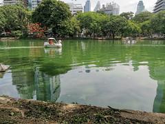 Lumphini Park (cowyeow) Tags: park city travel asia asian thailand bangkok lumphinipark water boat lizard monitor composition reflection