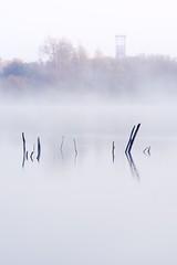 Matin froid (Fabien Gotti) Tags: matin froid brume lac trélazé pentax k1 eau reflet chevalement foret mines