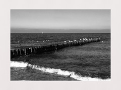 Endless Love (**Karin**) Tags: longing endless love liebe ostsee balticsea