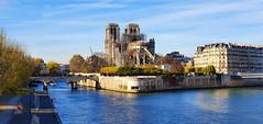 28 Paris Novembre 2019 - Notre-Dame de Parisd dans l'île de la Cité (paspog) Tags: paris france novembre 2019 seine notredame cathédrale cathédralenotredamedeparis cathedral katedral kathedral notredamedeparis