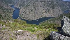 Cañón del Sil - Miradoiro da Columna, Parada de Sil (Ourense) (Miguelanxo57) Tags: río cañón sil ríosil ribeirasacra paradadesil nogueiraderamuín ourense galicia mirador paisaje