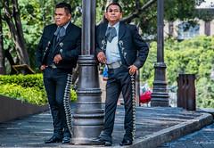2019 - Mexico - Cuernavaca - 14 - Zócalo Mariachi Musicians (Ted's photos - Returns late December) Tags: 2019 cuernavaca mexico nikon nikond750 nikonfx tedmcgrath tedsphotos tedsphotosmexico vignetting cuernavacamorelos cuernavacazócalo cuernavacazocalo mariachi mariachis entertainers musicians two duo pair costume uniform males twomen glasses