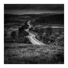 Heading for a surprise (fishyfish_arcade) Tags: gvariof35561260mm gx7 landscape longshaw lumix panasonic peakdistrict square blackwhite blackandwhite bw monochrome mono