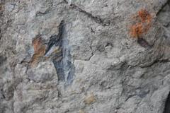 DSC_8181 (jgdav) Tags: ancient quartz pigment image blue macro pictograph petroglyhph ochre america rock