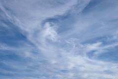 Clouds Naturally (Modkuse) Tags: clouds cloudyday cloudy cloudscape nature natural natureart art artphotography artistic artisticphotography photoart fineartphotography fineart sky skyscape dramaticsky provia fujiprovia xh1provia xh1proviasimulation fujifilmproviasimulation sooc straightoutofcamera nopostprocessing fujifilm fujinon fujinonxf1655mmf28rlmwr xf1655mmf28rlmwr outdoors