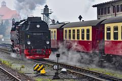Harzer Schmalspurbahn (r.wacknitz) Tags: wernigerode harzmountains harzerschmalspurbahnen sachsenanhalt bahnhof trainstation traffic locomotive nikond3400 tamron70300
