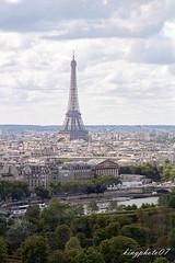 Vue depuis la Grand Roue de Paris (kingphoto07) Tags: aparis a paris tour eiffel jardin travel vue depuis la grand roue de