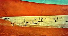 Namibia 2004, DeadVlei , Ton-Pfanne im Sossusvlei  , heiß und trocken ,  N3/12138 (roba66) Tags: namibia2004 namibia 2004 textur texture effecte landschaft landscape paisaje roba66 nature natur naturalezza urlaub reisen travel explore voyages afrika africa deadvlei salzpfanne sossuvlei tonpfanne wüste desert dünen dunes rundreise visit tourism