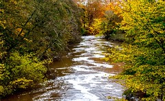 Downstream (odell_rd) Tags: alnwick northumberland riveraln autumn coth5 ngc sunrays5