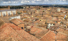Roofs of Siena (Jan Kranendonk) Tags: siena italy italian europe european city town building architecture historical landmark sunny sky travel cityscape townscape houses scenic trees landscape toscane park tuscany hdr