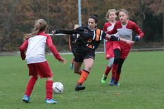 """HBC Voetbal • <a style=""""font-size:0.8em;"""" href=""""http://www.flickr.com/photos/151401055@N04/49117948523/"""" target=""""_blank"""">View on Flickr</a>"""