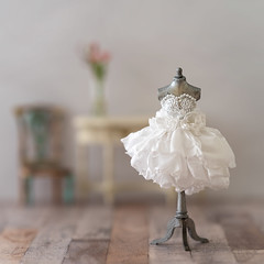 Puffball and roses (hehaden) Tags: dress gown puffball roses white mannequin dollshouse miniature furniture square