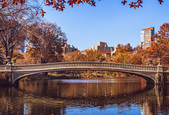Splendor of a New York Fall (DJB Photo NYC) Tags: bowbridge centralpark autumninnewyork fallcolors landscapephotography urbanbeauty newyorkcity lakeview cityscape nycphotography canont5i sigma1835mm nycparks cityexplorer worldcities lake trees fallfoliage reflection