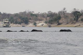 Namibia Luxury Photo Safari 12
