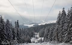 Vue sur la vallée (Kilian Sanlis) Tags: nature wild sauvage alsace hautrhin bagenelles neige snow montagne arbre tree