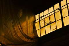 Golden Light (Jana_Apergis) Tags: abandoned urbex urban exploration rustic rurex empty lost places window light shadow sidelight golden tarp folds chiaroscurro