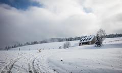 Auberge perdue (Kilian Sanlis) Tags: nature wild sauvage alsace hautrhin bagenelles neige snow montagne