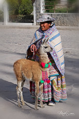 Woman with a baby lama (marko.erman) Tags: colca valley river yanque village folk traditional tradition dressing bridal parades portrait colorfull sony outside sunny peru clothes hat decorated embroidery lama animal latinamerica southamerica