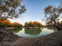 Kinchega Sunset 1 (Michael Rawle) Tags: trees camper kinchega tree river water things sky camping nationalpark sunset darlingriver nsw