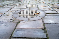 Reflections in a Stone Eye (hervedulongcourty) Tags: photo autumn londres reflet leicam10p reflection city manualfocus automne summiluxm50mmf14asph ground unitedkingdom urban leica london travel photography summilux leicam europe tourism sol m10p ngc