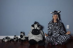 Day 4680 (evaxebra) Tags: wh wah zebras zebra pajamas pjs hat blue outlet wall stuffies stuffed animals five 5