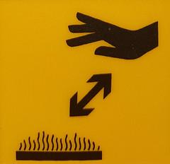 Hand Warmer (Bracus Triticum) Tags: hand warmer アルバータ州 alberta canada カナダ 8月 八月 葉月 hachigatsu hazuki leafmonth 2019 reiwa summer august