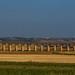 Puglia 19-104