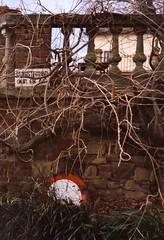 Nature knows no private property (ale2000) Tags: 100 35mm astia canon fuji fujiastia ql19 abandoned analog analogphotography analogue cartello diapositiva expired film fotografiaanalogica grass nature pellicola privateproperty proprietàprivata ruination sign slide slidefilm trees wall lomography filmisnotdead believeinfilm stones boundaries giardino privato garden streetsign
