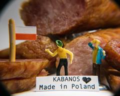 Kabanos - Polish smoked sausage. For Macro Mondays. The theme is main meal. (@magda627) Tags: food coth5 tinypeople color macromondays mainmeal sony tiny flickr playing edit kabanos anteketborkacom people closeup hmm macro lightroom detail