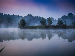 Foggy (Andrzej Kocot) Tags: andrzejkocot art adventure fineart forest fog creative clouds colors countryside colorful sky surreallandscape surreal sunlight skyline sunrisemood olympus omd outdoor outside poland polska lowlight mood