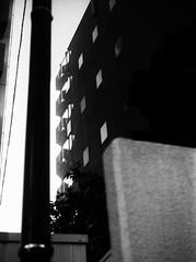 行間 (double meaning) (Dinasty_Oomae) Tags: aires35iiia aires35 aires アイレス35iiia アイレス35 アイレス 東京都 東京 tokyo 白黒写真 白黒 monochrome blackandwhite blackwhite bw outdoor 港区 minatoku
