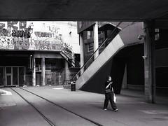 the goods line (gro57074@bigpond.net.au) Tags: f80 2470mmf28 tamron d850 nikon november2019 guyclift tracks railway graffiti candid streetphotography bw monochromatic monotone monochrome mono blackwhite uts cbd sydney ultimo thegoodsline