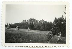 . (Kaïopai°) Tags: vintage fels rock 1930s 1930er wald forest heu heuernte wiese weide natur gamrig tafelberg