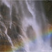 BC Rainbow