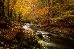 Little River - Great Smoky Mtns National Park (Steve O'Day) Tags: nationalpark fall autumn timelapse nature canon tennessee travel outdoors water
