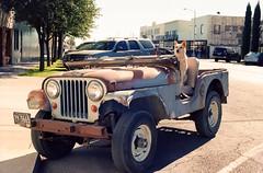 Good Boy (Past Our Means) Tags: kodak kodakfilm kodakportra portra 400 35mm 28mm marfa texas travel road trip jeep willys jeepster dog drive adventures adventure canon ae1 canonae1 wanderlust car film filmisnotdead filmphotography filmsnotdead iconla
