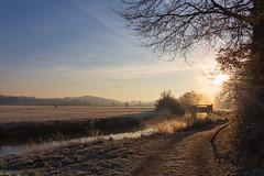 nach einer kalten Nacht (Jörg Kage) Tags: deutschland germany saarland natur nature landschaft landscape river fluss baum tree trees bäume himmel sky feld canon canonlens canoneos700d eos700d