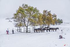Otoño, invierno y viento sur gélido en Arraba (Jabi Artaraz) Tags: arraba gorbeia esquís esquiadores montañeros yeguas potros otoño invierno frío viento popa resguardados