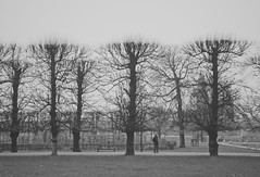 Just another Friday afternoon.. (erlingraahede) Tags: people simplicity efterår canon vsco melancholic autumn lines trees monochrome bw kongenshave copenhagen poetic november raahedep