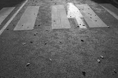 LUZ (Toniofoto) Tags: noir et blanc passage piéton flèche luz lumière feuilles