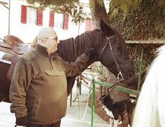 Insieme a Gilbo (Giovanni Santori) Tags: cavallo murgese centroippico ilvecchioforte albaadriatica abruzzo italia
